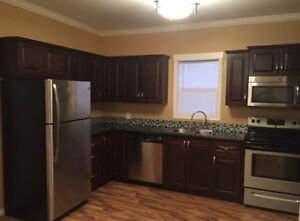 House for rent in Reston mb
