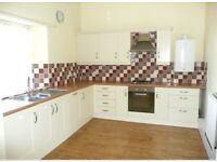 BRECON Large 2 bedroom flat immaculate £500 per month