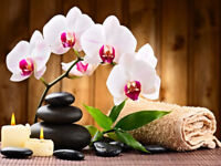 New relaxing terapist massage by andree