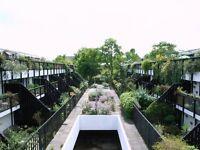 lrge dble rm in 3bed maisonette - Belsize Pk. Lrge sunny flat with 2 ext terraces, nr heath & shops