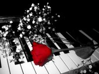 ~ piano lessons in your home ~