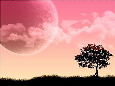 Pink Sky Society