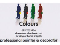 Professional Painter & Decorator