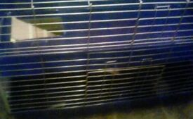Free double Indoor cage
