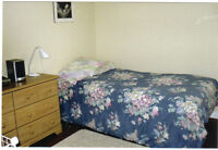 Mature Professional Male- Room available Now!!