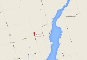 "KLAWS: Lost  ""Granger"" Sand Bar/Elm Tree Rd in Little Britain Kawartha Lakes Peterborough Area image 3"