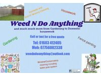 professional window cleaning service as well as gardening , cleaning , fence painting ect