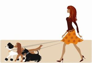 Looking for a dog walker in polonia park!