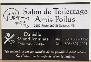 Salon De Toilettage Amis Poilus