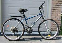 Customized CCM Mountain Bike - Womens