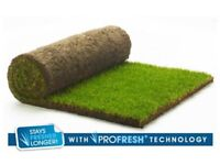 Rolawn Medallion® Turf - 7 rolls - left over from garden project