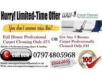 Professional Carpet Cleaning Discounted Offers!