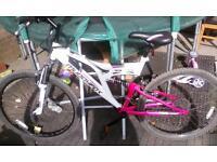 women/girls mountain bike