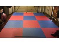 MMA, Jiu Jitsu Training Partner Required