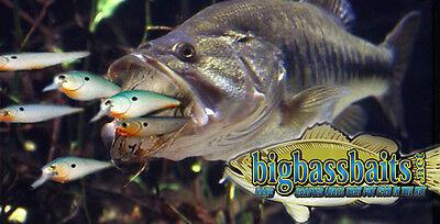 BIGBASS CUSTOM PAINTED FISHING LURE