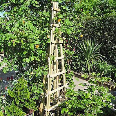 2 x Grange Fencing Trellis Obelisk 189H x 50W x 75D