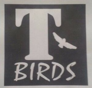 T-BIRDS-GREASE-A5-IRON-ON-T-SHIRT-TRANSFER
