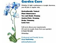 Garden Cleaning / Gardener