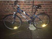 Cheap bike (road bike)