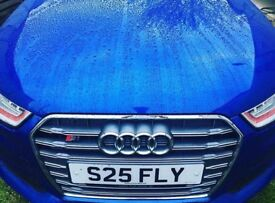 Private number plate S25 FLY *PRICE DROP**