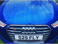 private number plate S25 FLY