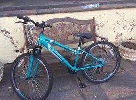 Women's / Girls bike