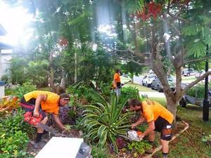 Groundy's Tree Services Capalaba West Brisbane South East Preview