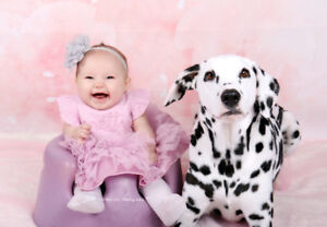 Baby, Birthday Party, Family & Pet -- Summer photo package