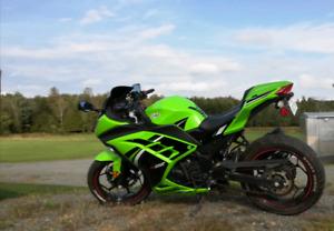Kawasaki Ninja 300 2014 spécial édition