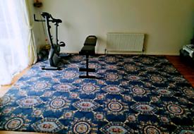 100% wool luxury pattern carpet