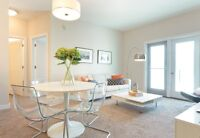 Beautiful Modern 2 Bedroom Apartment to Sublet - November 1