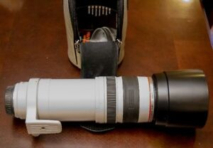 Canon 100 - 400 f/4.5-5.6L IS USM