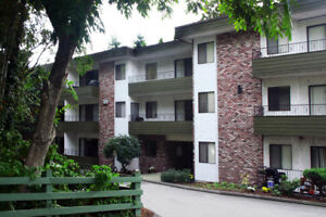 Mill Lake Apartment For Rent | 33298 Robertson Ave.