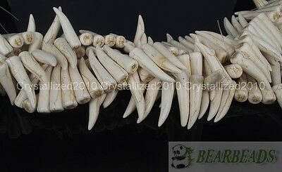 White Blue Mixed Howlite Turquoise Stick Animal Tooth Shape Spacer Beads 16