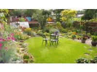 Garden Designer/ Gardener