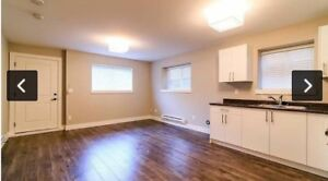 2 bedroom basement suite for rent (everything included)