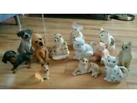 Collection of China animals