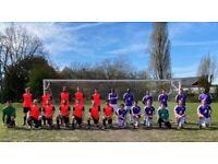 Goalkeeper wanted for 11 aside football team, free football ah23