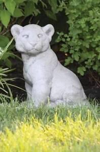 Lion Cub indoor or outdoor statue Brisbane City Brisbane North West Preview