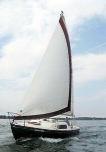 Olympic Dolphin, 23' for sale