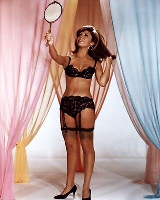 NANCY SINATRA SUPER SEXY BRA AND GARTER BELT 5X7 PHOTO