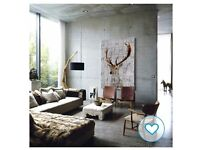 BRAND NEW: Stag Canvas Wall Art