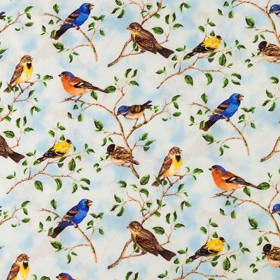 Spring Summer Birds  HaNdMaDe Window Curtain Valance Cotton fabric 43