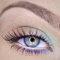 MAC Pro Makeup Artist