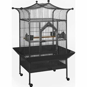 PARROT - CAGE - PERROQUET