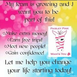 Join PINK ZEBRA soy based wax sprinkles and more!