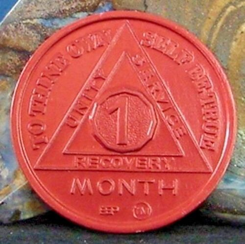 Alcoholics Anonymous AA 1 Month 30 days Aluminum Medallion Chip token coin Sober