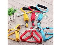 40 new Dog Leads & Harness for Medium sized dogs