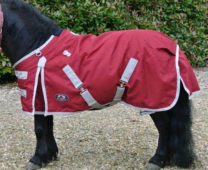 Ruggles Shetland Pony Rugs