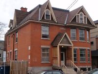 Spacious 2 Bedroom Basement Apartment in the Glebe